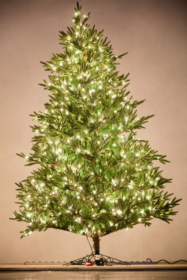 Holiday Bright Lights 8.5' Fraser Fir Deluxe Medium