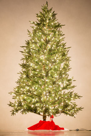 Holiday Bright Lights 9.5' Fraser Fir Deluxe Medium