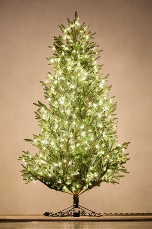 Holiday Bright Lights 7.5' Carolina Fraser Fir