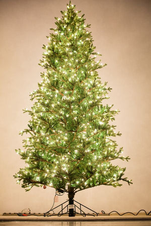 Holiday Bright Lights 9' Baby Pine Full