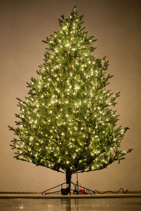 "Holiday Bright Lights 9' ""Fresh Cut"" Tree Slim"