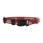 Arizona Cardinals Pet Collar Size XS