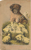 Victorian Trade Card - J.D. Larkin Boraxine - Puppy and Chicks - J. W. Foster & Co., Mantua, Ohio