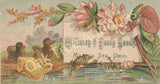 Victorian Trade Card - Ducks and Frog - Mrs. M. A. Smith Millinery & Fancy Goods, Mantua Station, Ohio