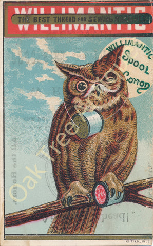 Victorian Trade Card - Willimantic Spool Cotton - Owl - W. R. Kelley, Wesleyville, Erie County, Pennsylvania