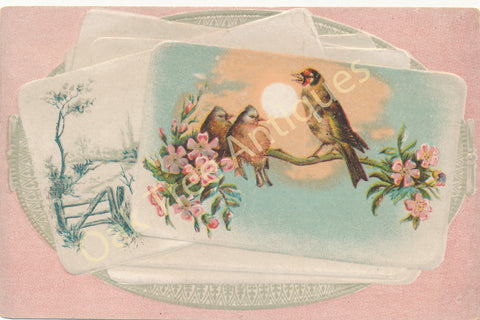 Victorian Trade Card - Birds - Meditation - Lion Coffee - Woolson Spice Co., Toledo, Ohio