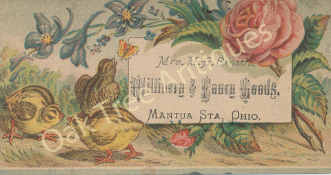 Victorian Trade Card - Mrs. M.A. Smith  Millinery & Fancy Goods - Mantua Station, Ohio - chicks and flowers