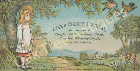 Victorian Trade Card - Ayer's Cherry Pectoral - Medicine - Girl with farm