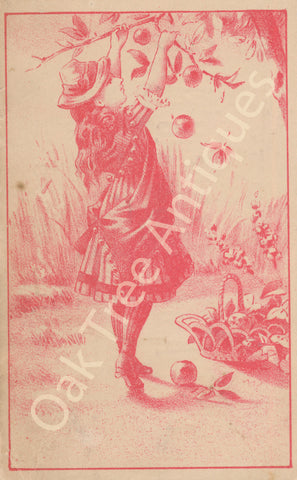 Victorian Trade Card - S.B. Hall Boots, Shoes, Trunks, Valises, Kent, Ohio - Girl picking fruit