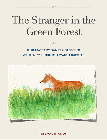 The Stranger in the Green Forest (eBook)