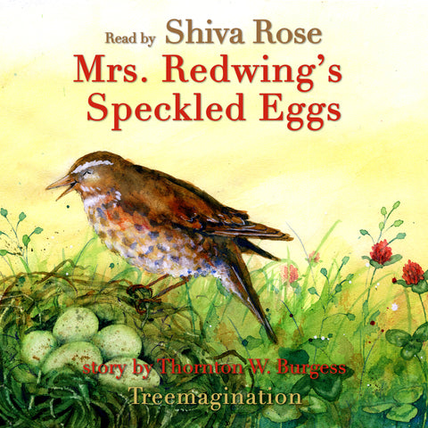 Mrs. Redwing's Speckled Eggs read by Shiva Rose (AudioBook) (Runtime: 7:02)