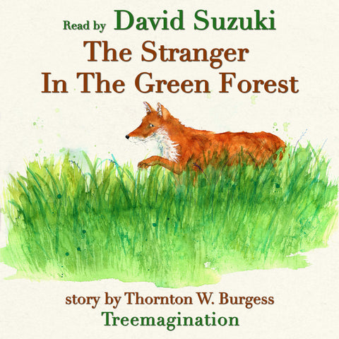 The Stranger in the Green Forest read by David Suzuki (AudioBook) (Runtime: 13:09)