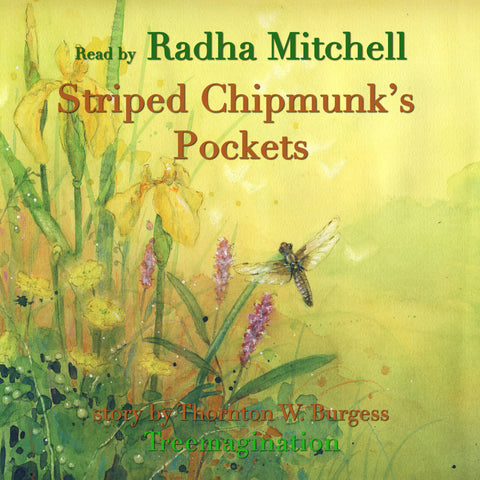 Striped Chipmunk's Pockets read by Radha Mitchell (AudioBook) (Runtime: 14:03)