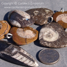 Load image into Gallery viewer, Pendant: Polished Limestone Fossil (Varies Styles)