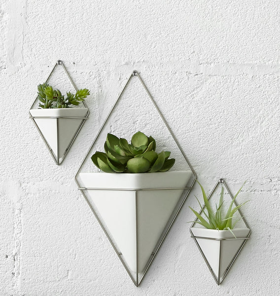 wall planter, indoor planters, planter set, planter, planters