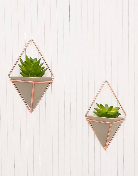 wall planter, wall storage, indoor planters