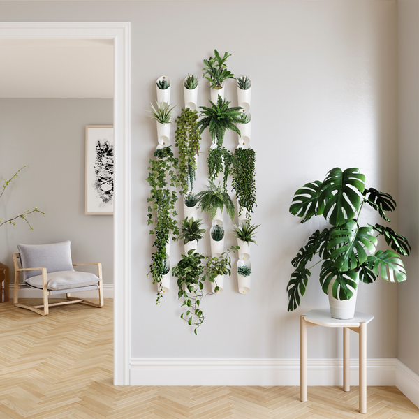 wall planter, indoor planters, planter, planters