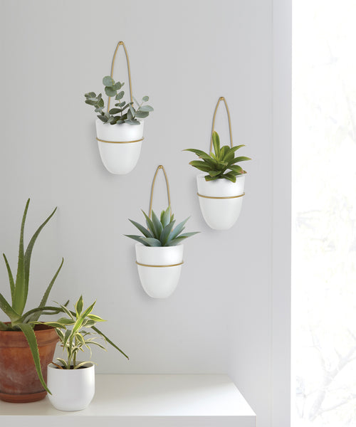 Wall Planters | color: White-Brass | Hover