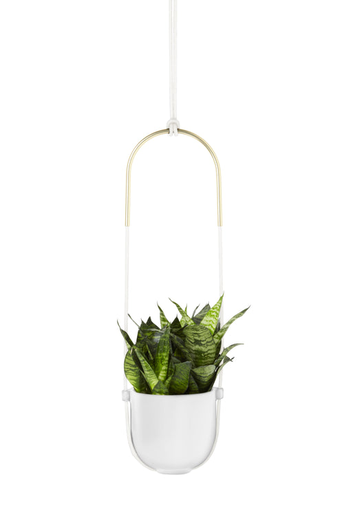 Hanging Planters | color: White
