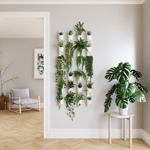 Wall Planters | color: White | Hover