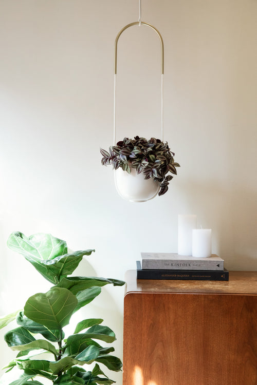 Hanging Planters | color: White | Hover