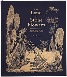 The Land of Stone Flowers - TREEHOUSE kid and craft