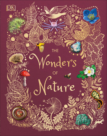 The Wonders of Nature - TREEHOUSE kid and craft