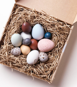 A Dozen Bird Eggs - TREEHOUSE kid and craft