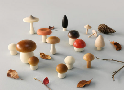 Forest Mushrooms in a Box - TREEHOUSE kid and craft