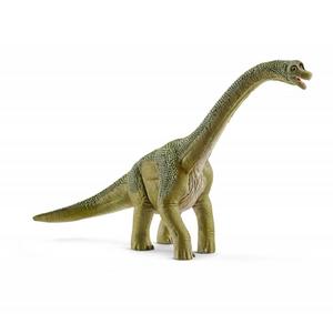 Brachiosaurus - TREEHOUSE kid and craft