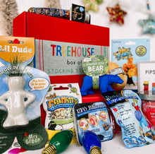 Load image into Gallery viewer, Box of Stocking Stuffers - TREEHOUSE kid and craft