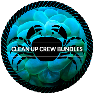 Clean Crew Bundle