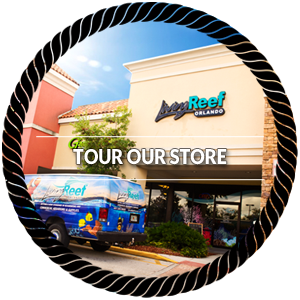 Tour Our Store