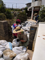 volunteers move dirt bags out of house