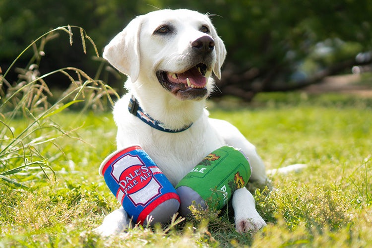 The Best Beer Inspired Dog Toys