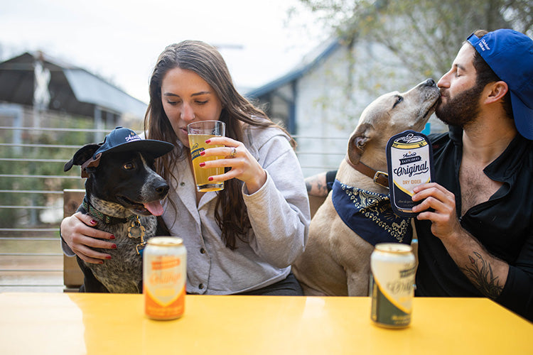 Bring Your Dog To Drink Day
