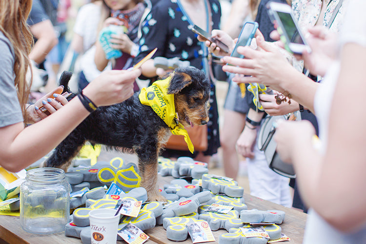 Why Your Business Needs Branded Pet Merch