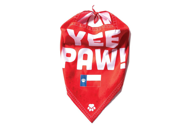 The K9 Kerchief: Customizable Branded Dog Bandanas