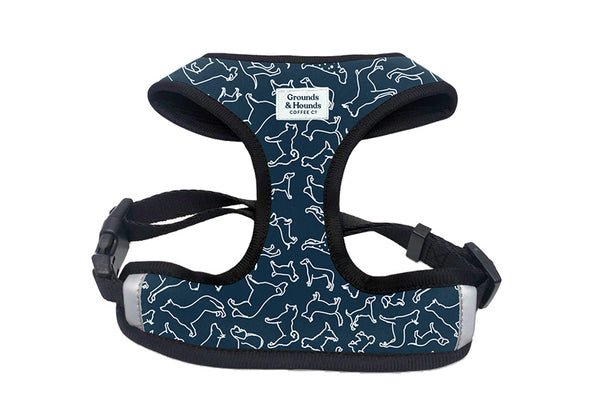 Chest Dog Harnesses For Speed and Comfort on Walks