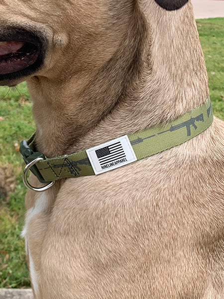 The Eco Friendly Dog Collar