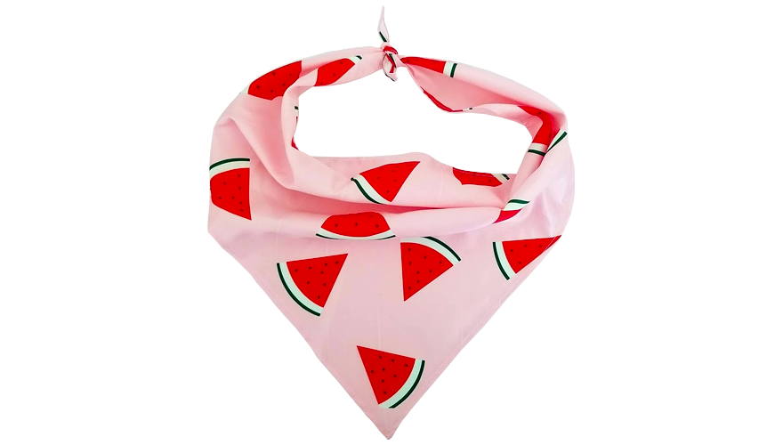 Watermelon Daiquiri Bandana
