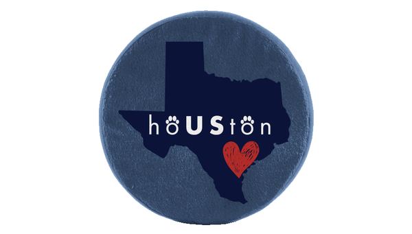hoUSton Frisbee Toy