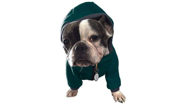 Mountain Pup Hoodie