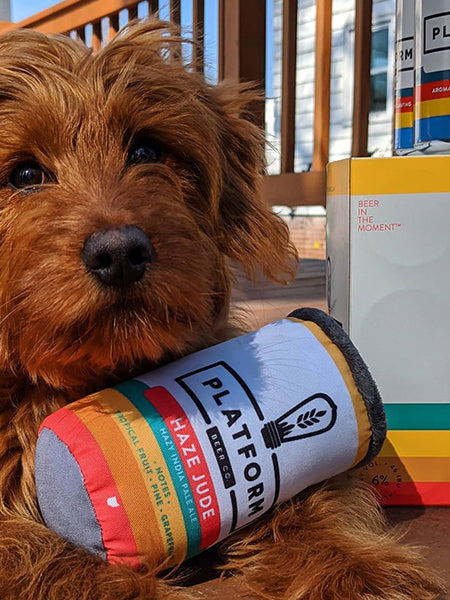 Customizable Beer Can Dog Toy: The New Yappy Hour