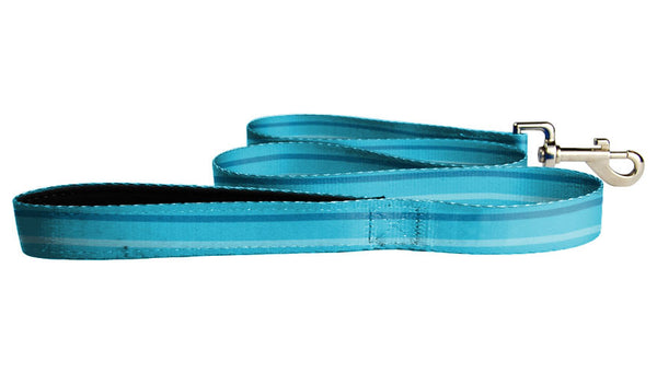 Teal Leash