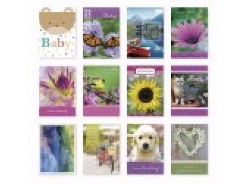 All Occasion ~ Assorted ~ Boxed Cards by Papercraft