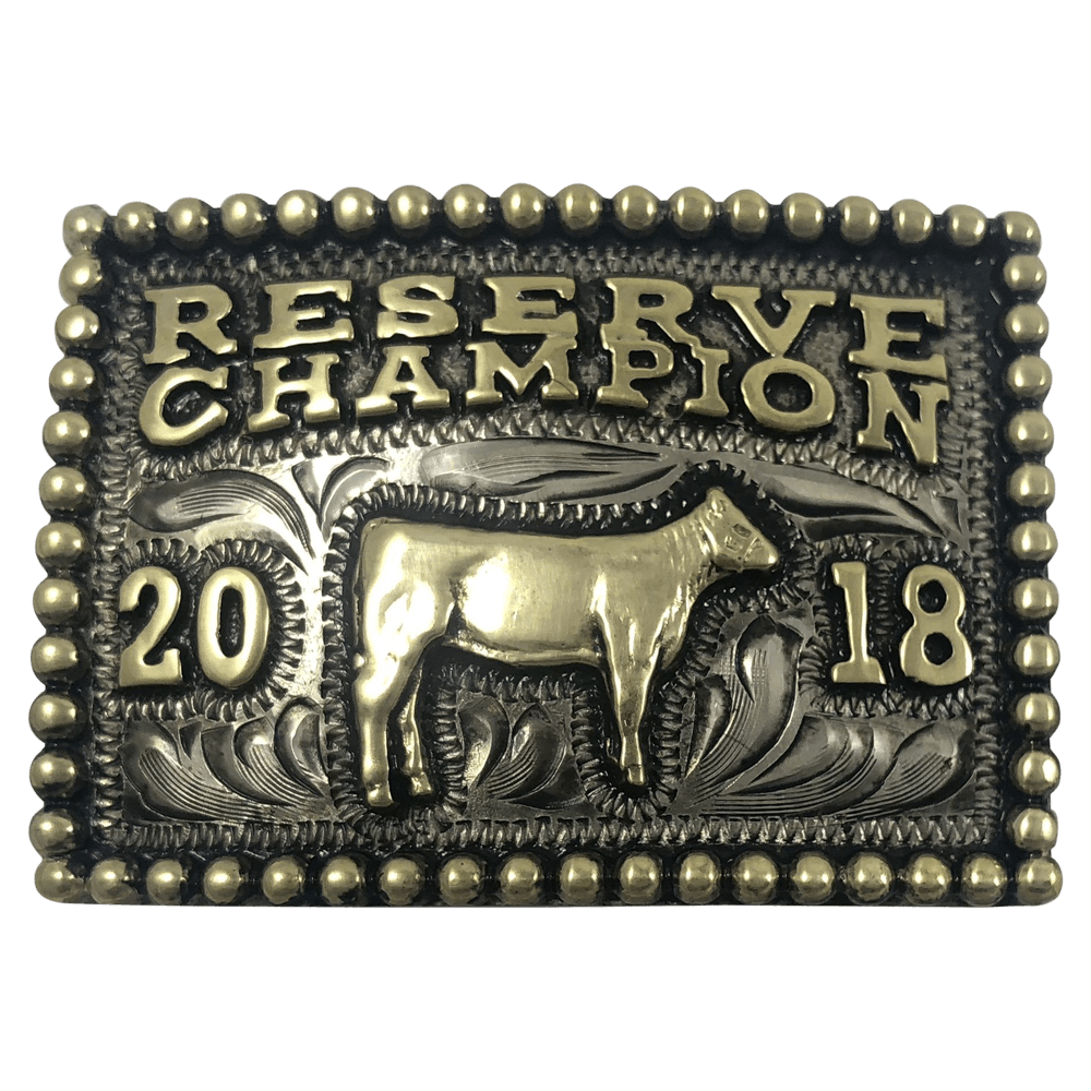 CBBP 104 - Corriente Buckle
