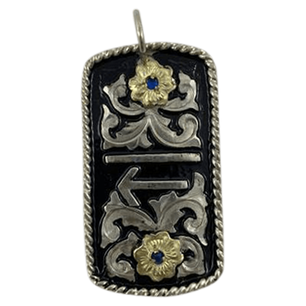 CBCR 129 - Corriente Buckle