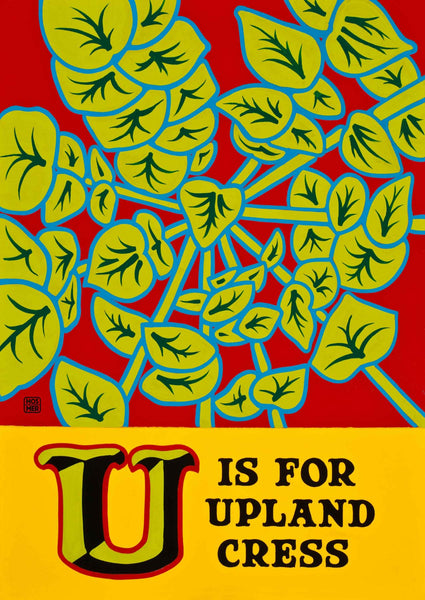 U is for Upland Cress Poster
