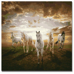 Five Horses Sunrise - Painting By Numbers - Jenra Store